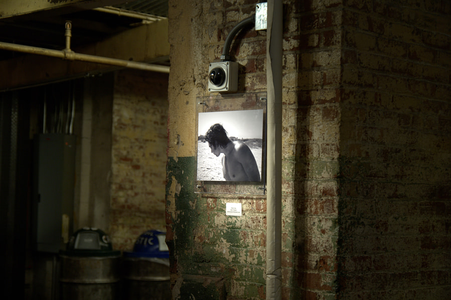 The cellar picture