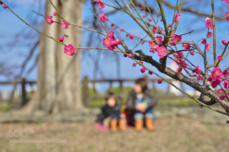 Photograph Motherhood ..  by Meshary M. AlObaid on 500px