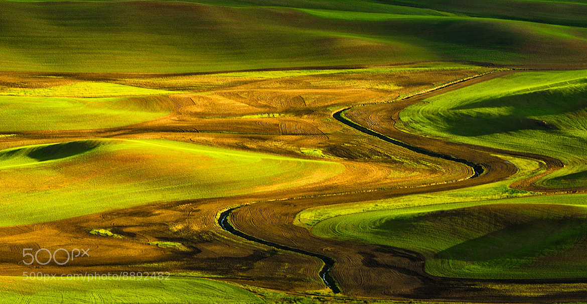 Photograph Wheat Fields of Palouse by Ani Pandit on 500px