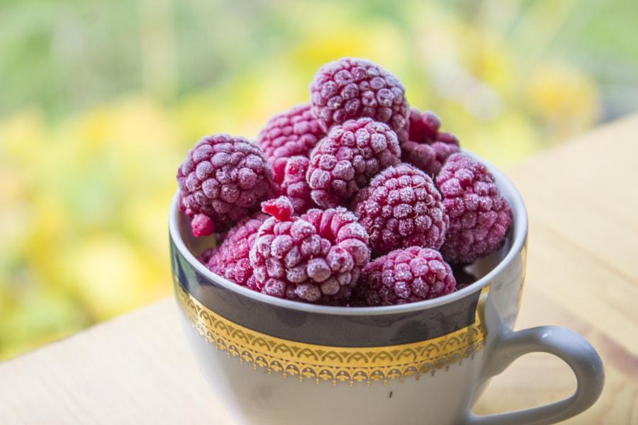 Frozen raspberry by Eli Grozdanovska on 500px.com