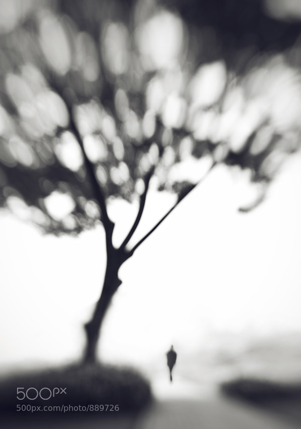 Photograph Upon Memory by Hengki Lee on 500px