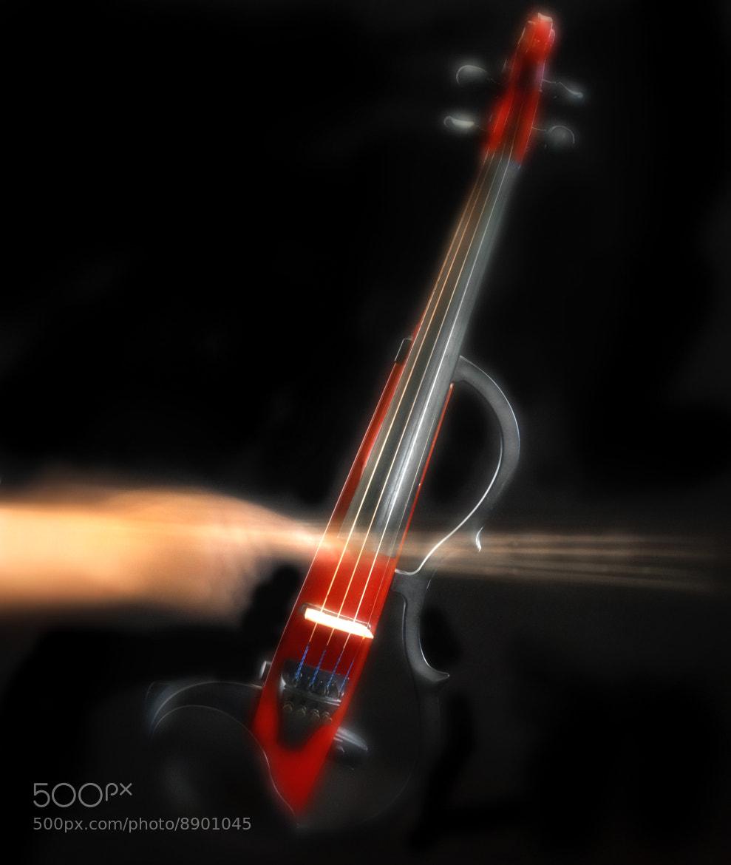 Photograph Silent violin by Mitsuru Moriguchi on 500px