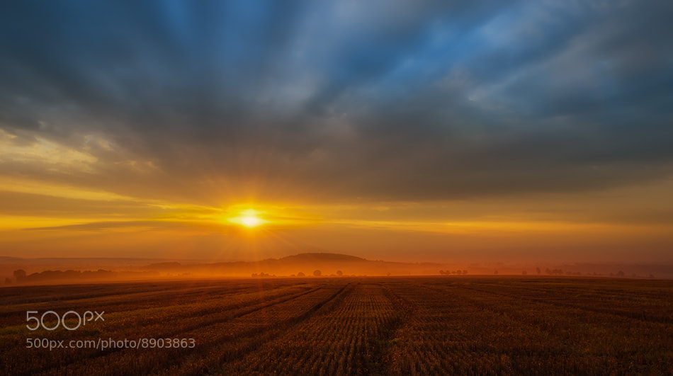 Photograph morning sun by Piotr Krol on 500px