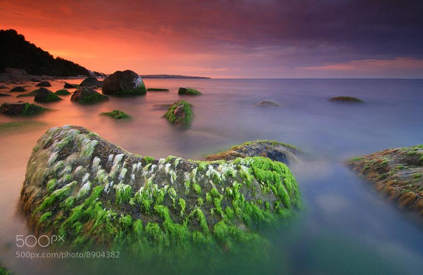 Photograph Black Sea Evening by Pavel Pronin on 500px