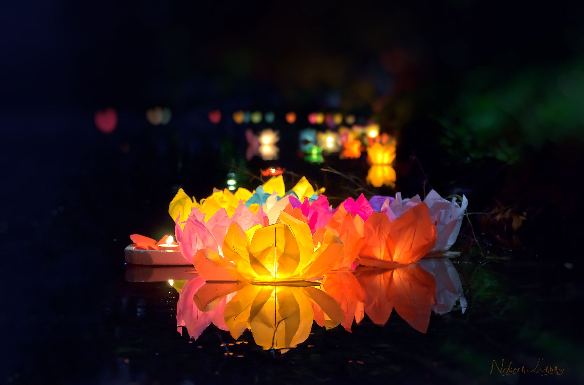Photograph Water lanterns of wishes by Nikita Labai on 500px