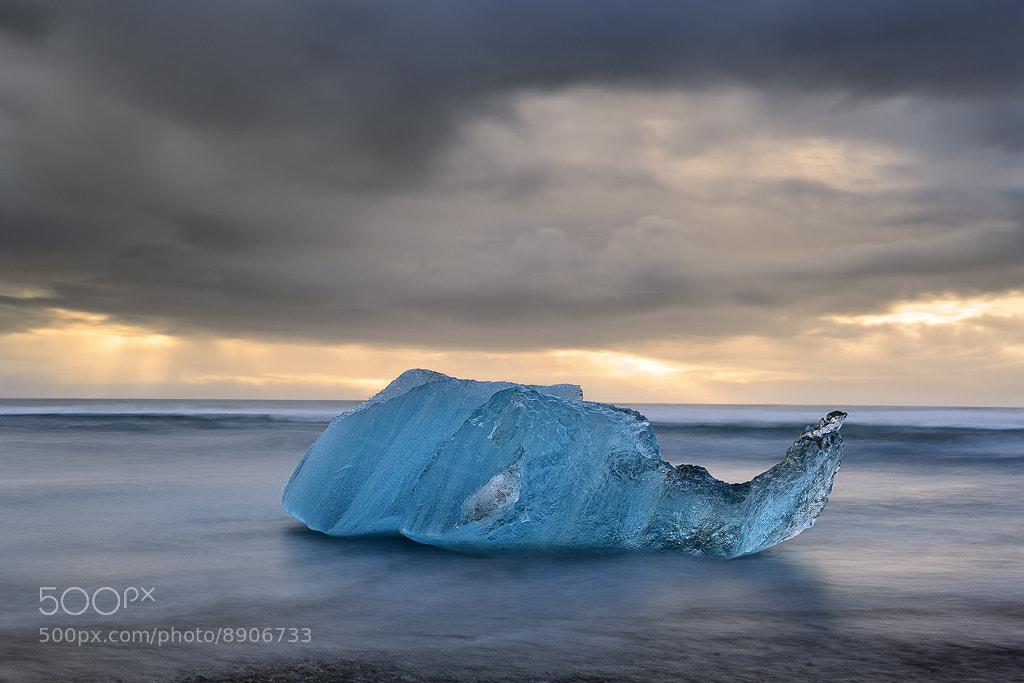 Photograph Dream of the Blue Elephant - Ice Dreams by Cedric Guilleminot on 500px