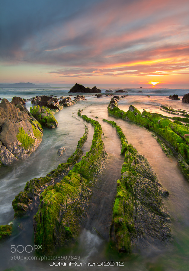Photograph Barrika Snakes II by Jokin Romero on 500px