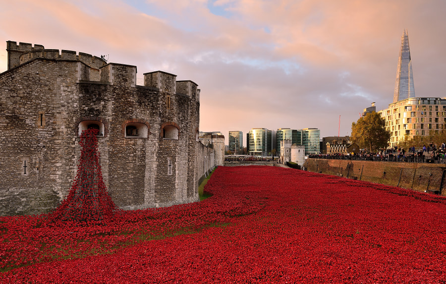 Remembrance by Andreas Jones on 500px.com