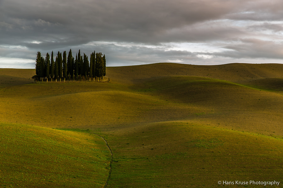 I arrived in San Quirico this afternoon and went out shooting with two of the participants who had arrived. We had a nice sunset.  This photo was shot during the Tuscany November 2014 photo workshop.