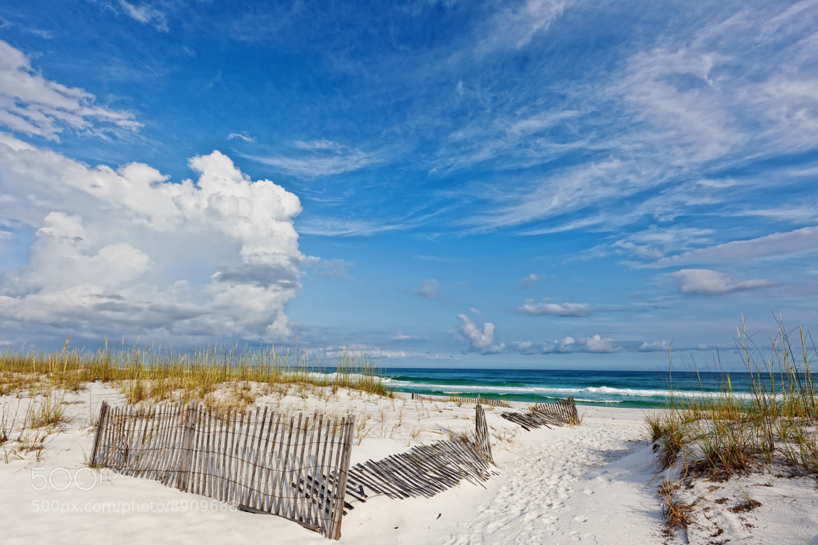 Photograph The Perfect Beach by Scott Evers on 500px