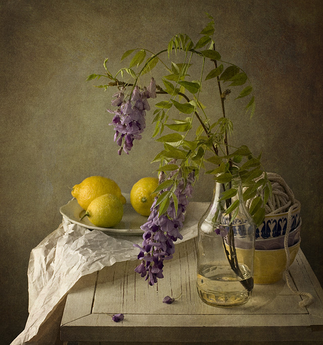 Photograph Purple flowers and lemons by Anna  Nemoy on 500px