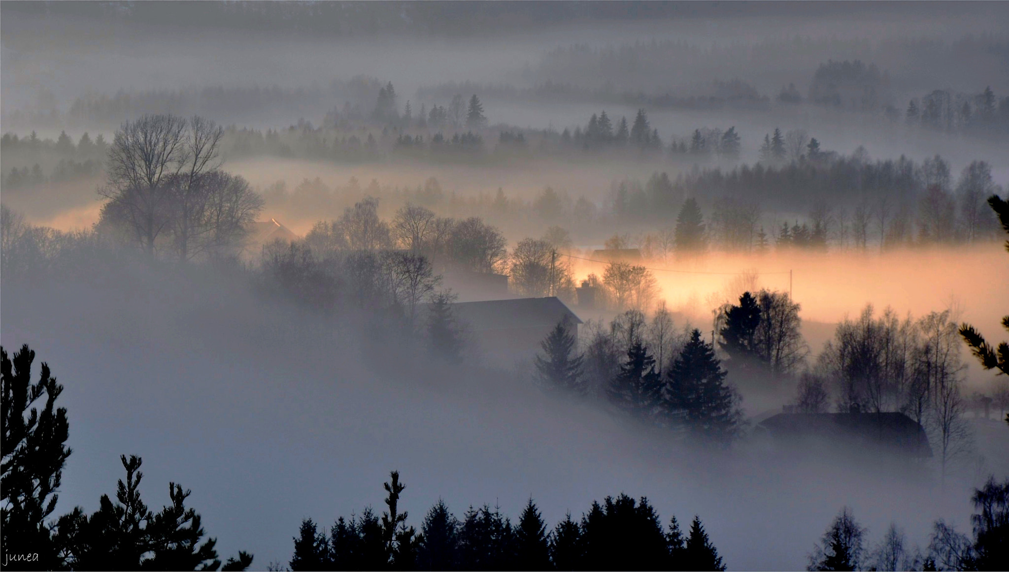 Photograph Sunlight coming through the fog by June A on 500px