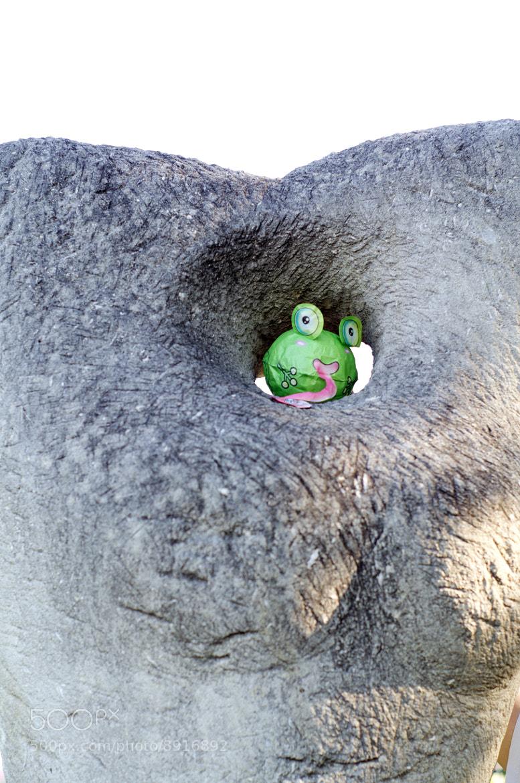 Photograph Goodmoodfrog is unpredictable! by Konstantin Mayurnikov on 500px
