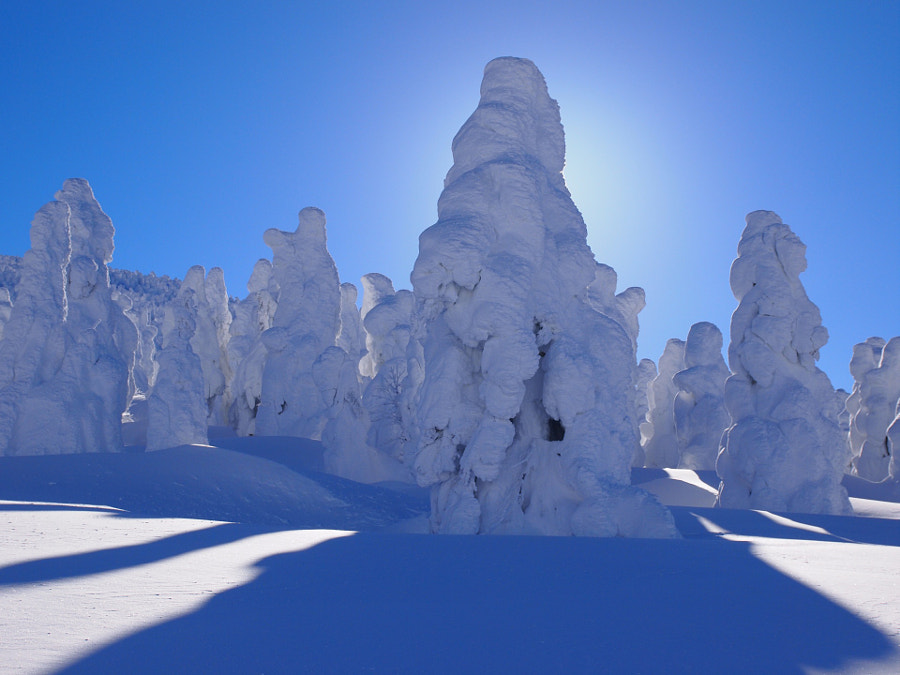Reasons to visit Japan in the winter: Mt. Zao Snow Monsters (Photo: Dai Nonaka on 500px.com)