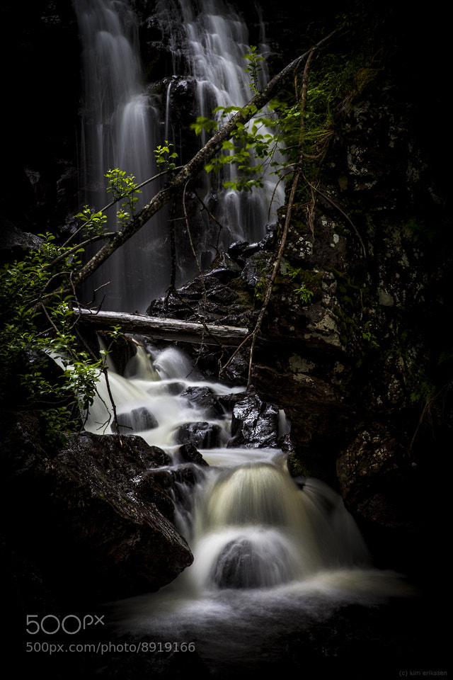 Photograph Fairytale by Kim Erikssen on 500px