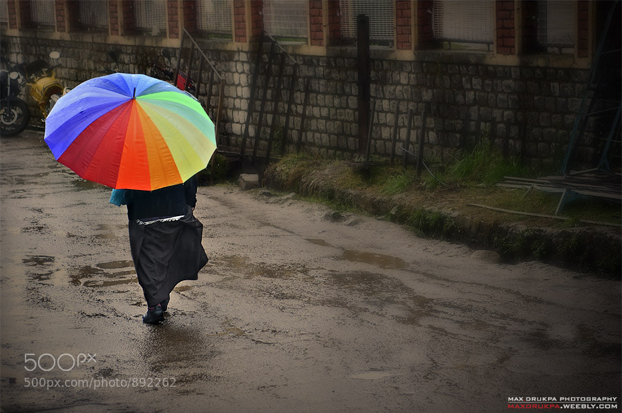 Photograph Colorfull Rain by Max Drukpa on 500px