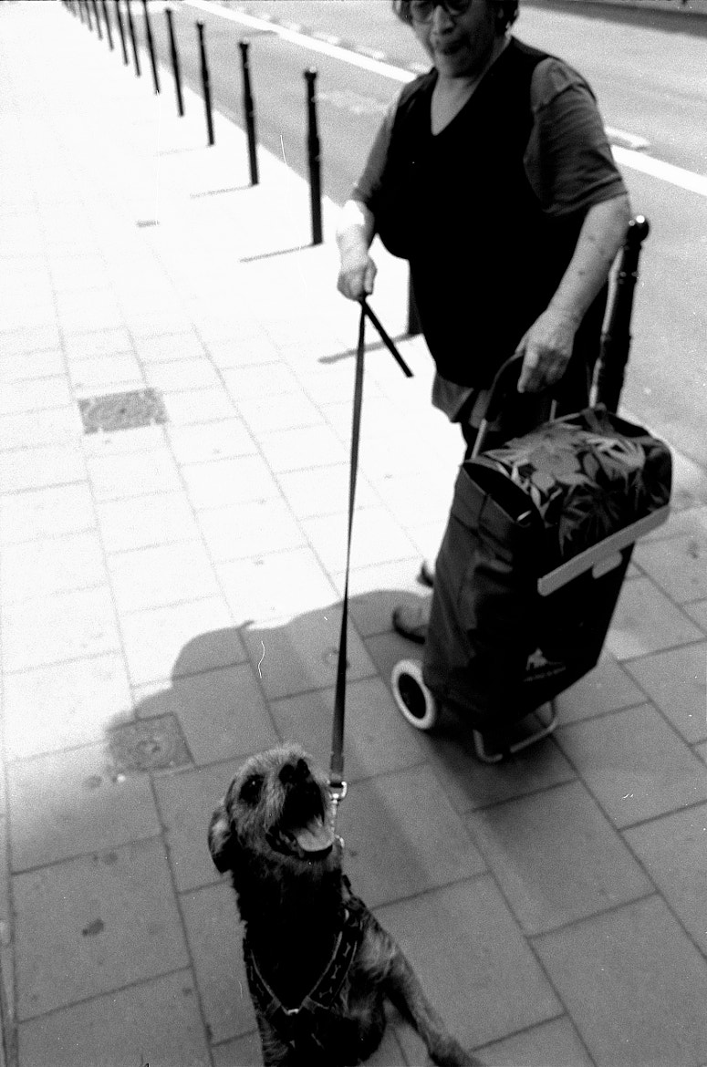 Photograph Woman with a dog by Jeroen Vranckaert on 500px