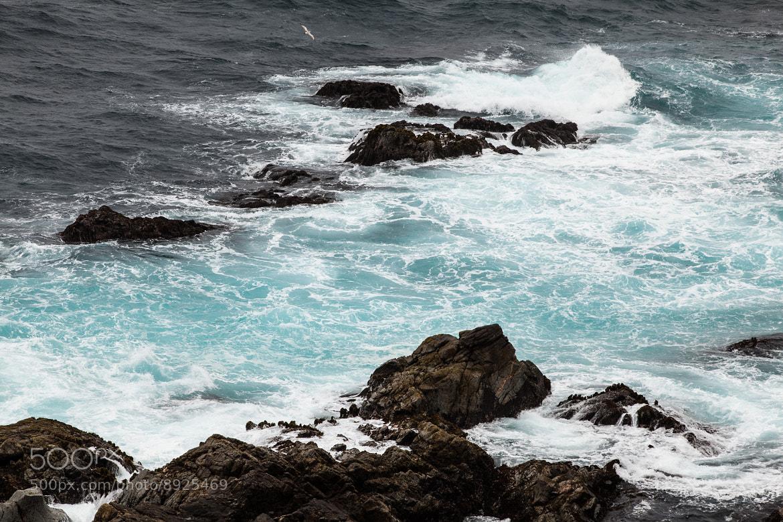 Photograph Pacific Ocean by Ilya Sabanin on 500px