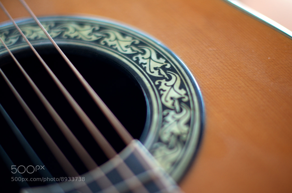Photograph Guitar DOF 7 by William Murphy on 500px