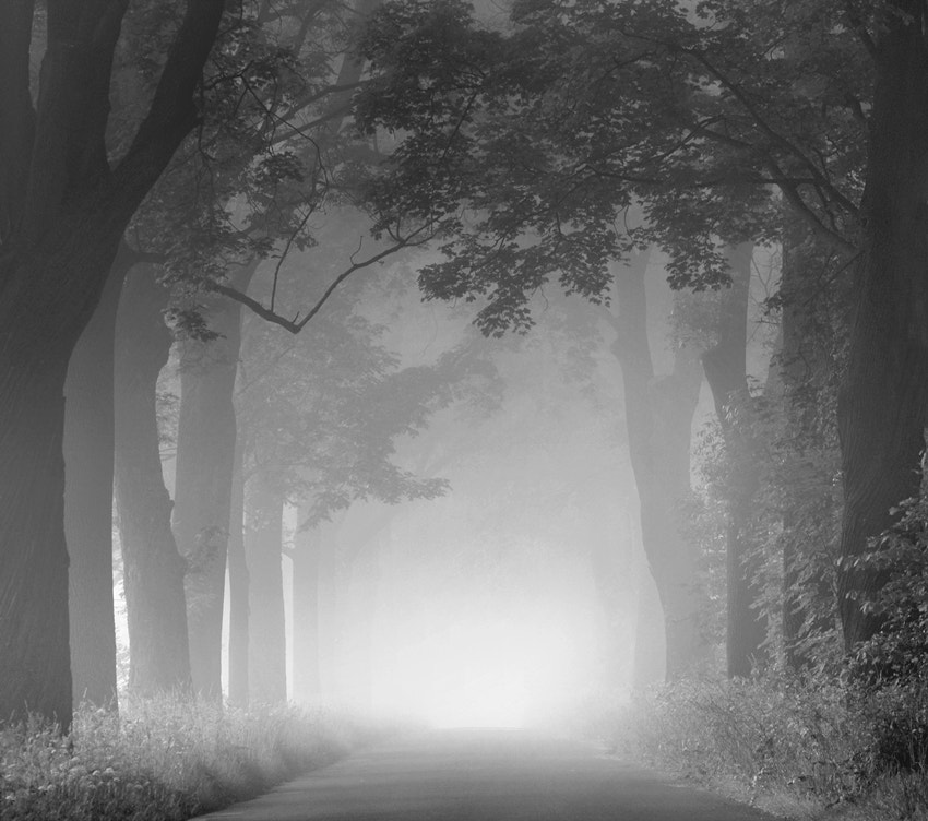 Photograph road to nowhere by Sebastian Luczywo on 500px