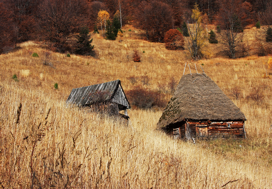 Romanian traditional houses by Andrei Moldovan on 500px.com