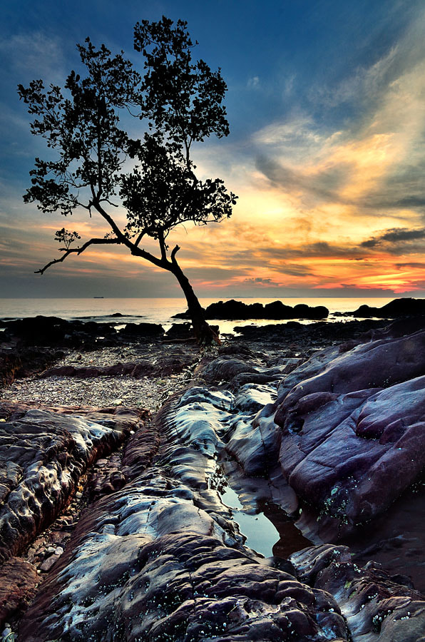 Photograph Alone by Ade Rinaldi on 500px