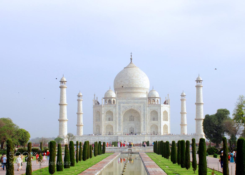 Photograph Taj-Timeless beauty by Subhash Masih on 500px