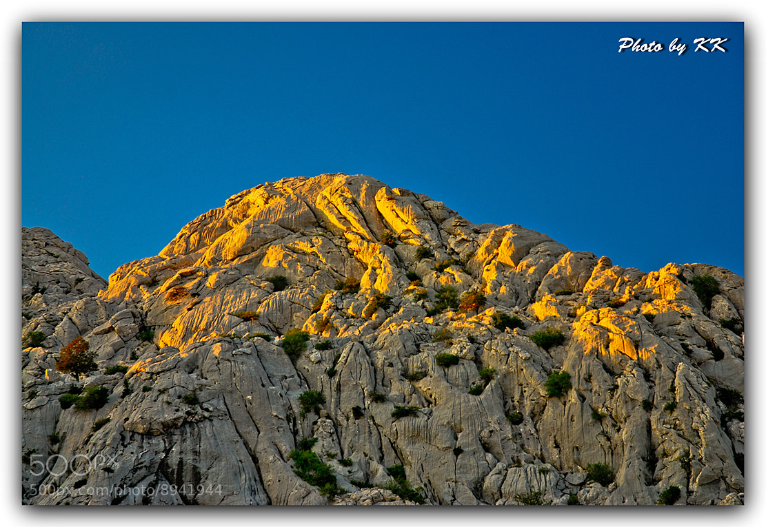 Photograph Golden Velebit by Kristijan Katarincek on 500px