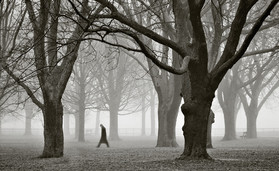 Photograph Fogwalker by Frank Lemire on 500px