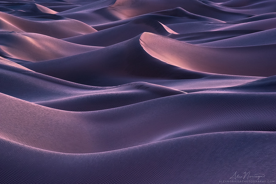 Nocturne of Shadow by Alex Noriega on 500px.com