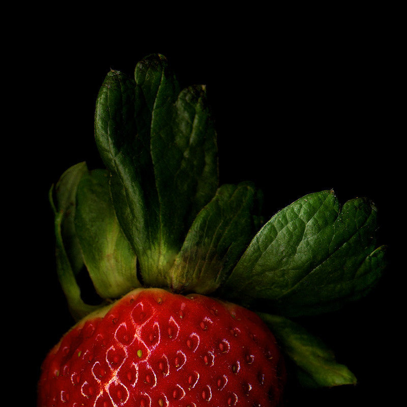 Photograph DETAIL of A SHINY STRAWBERRY... by Magda Indigo on 500px