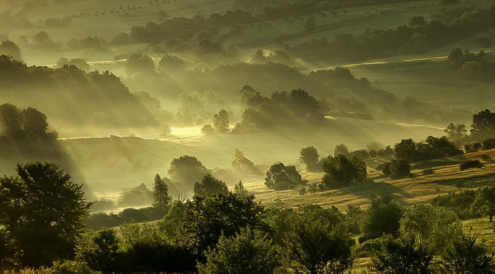 Photograph A misty one... by Atti Maguran on 500px