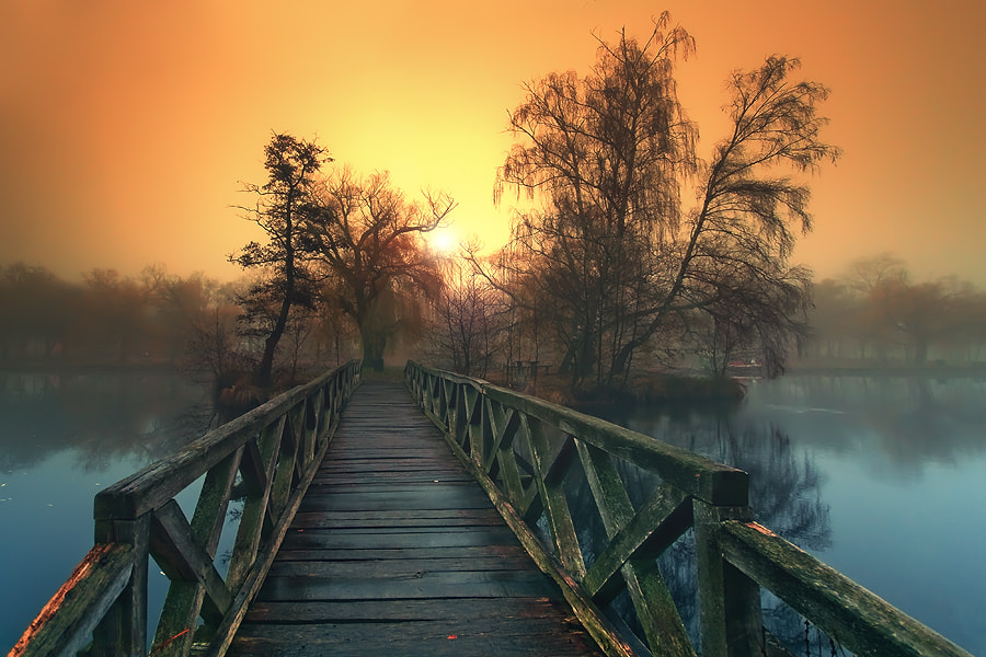 Photograph otherworld dreams by Adam Dobrovits on 500px