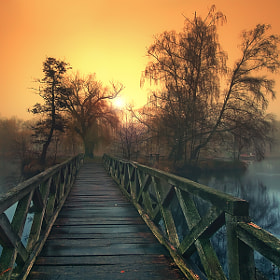 otherworld dreams by Adam Dobrovits (Adam_Dobrovits) on 500px.com