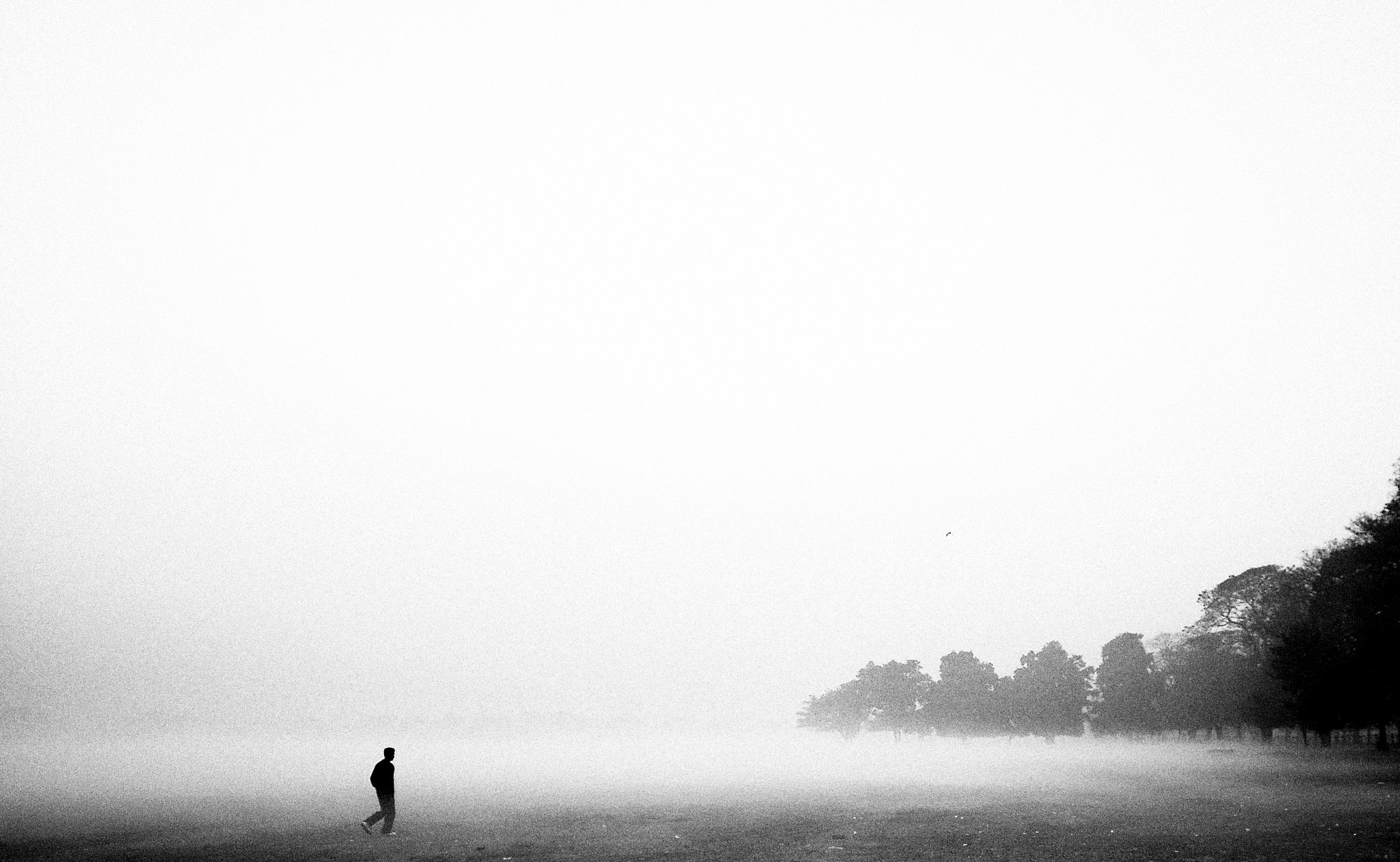 Photograph Alone by Atish Sen on 500px