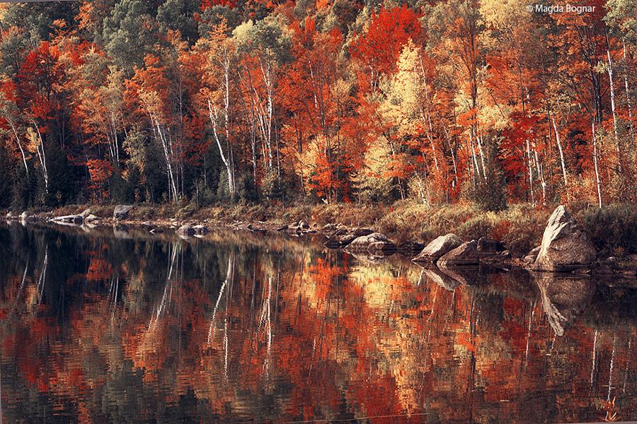 Adirondacks Autumn