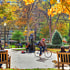 Rittenhouse Square Sunday