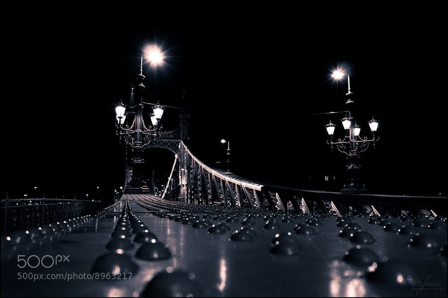 Photograph Bridge of Liberty by Stefánia Péter on 500px