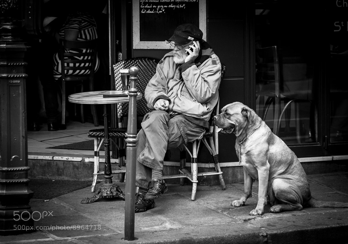Photograph Two Old Friends by Pilar   Silvestre             *Moneypenny* on 500px