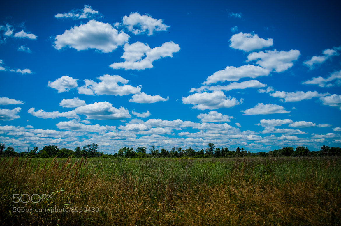 Photograph Asylum Nature Preserve by Mike Brouwer on 500px