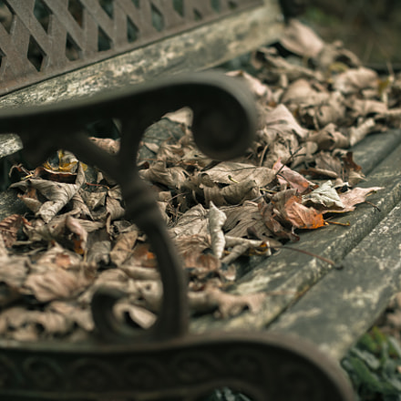 Bench with leafs