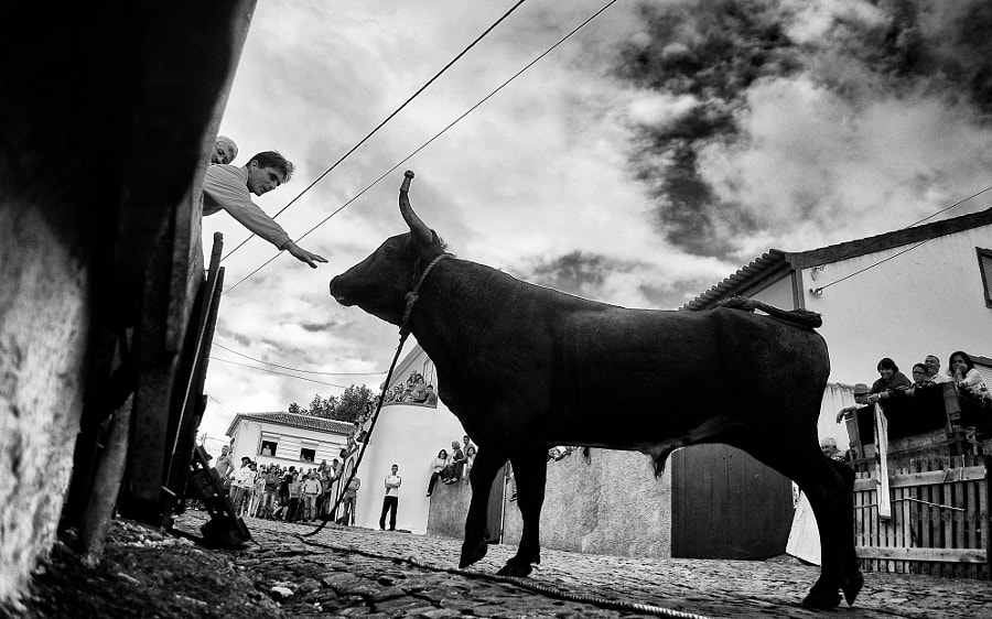 Touch by André Fagundes on 500px.com