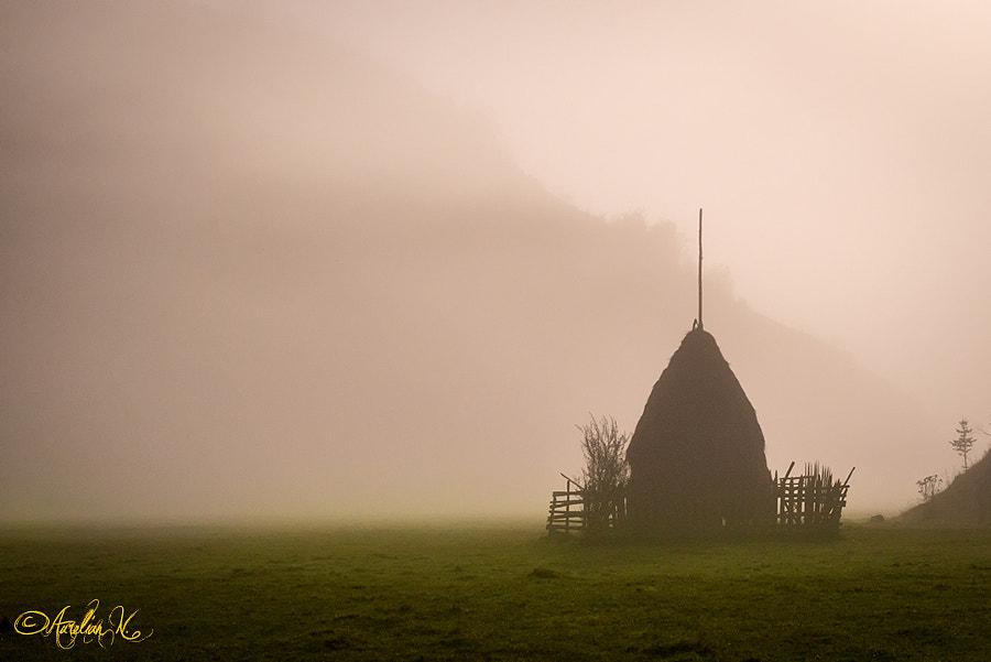 Haycock in the night fog