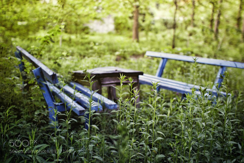 Photograph Sad little bench by Dusan Milak on 500px