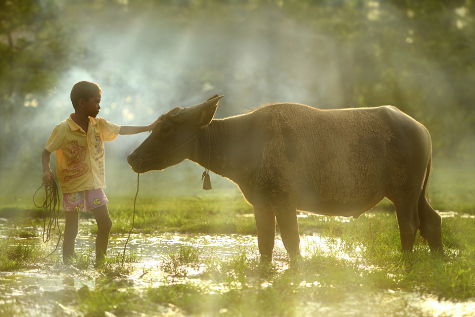 Photograph Friend by sarawut Intarob on 500px