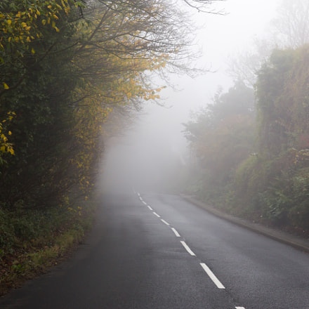 Spooky English Country Road