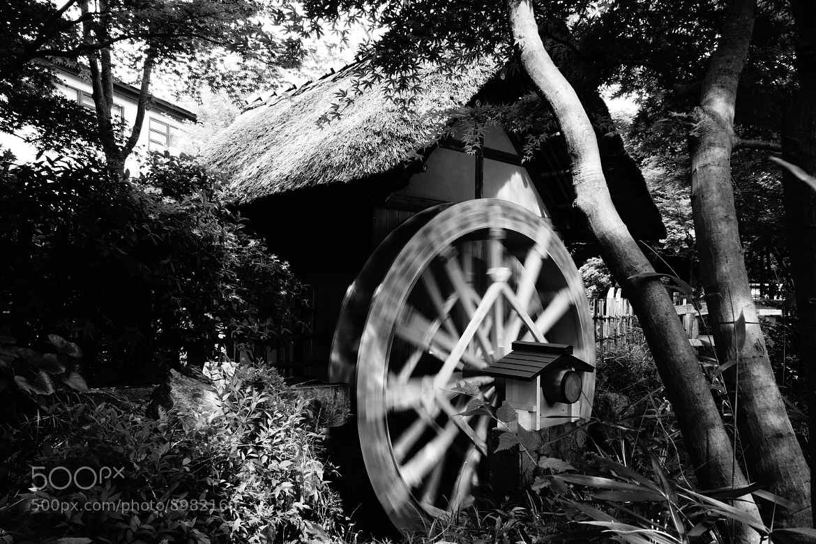 Photograph Waterwheel by ALIENIZER Photography on 500px
