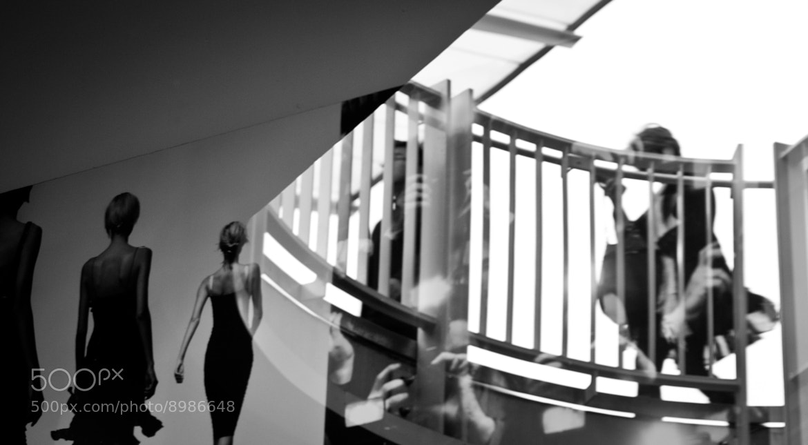 Photograph Paparazzi, Models and reflection by J Tan-Torres on 500px