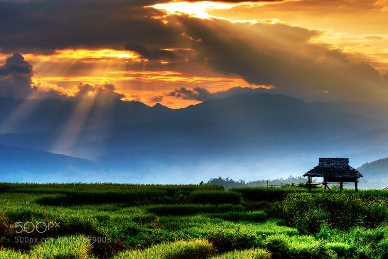 Photograph The Hut by Methee Makornkun on 500px