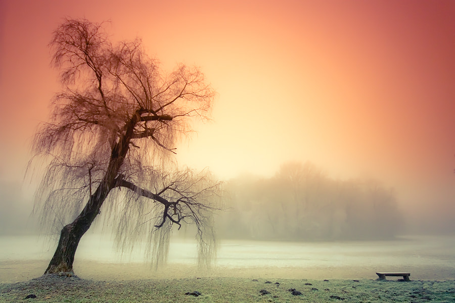 Photograph voice of calm by Adam Dobrovits on 500px